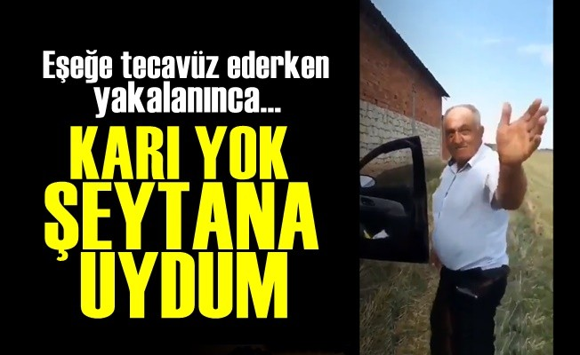 'NAPAYIM KARI YOK' DEYİP EŞEĞE TECAVÜZ ETTİ!